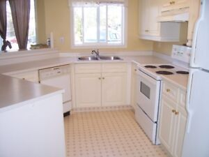 Large 2 Bedroom Condo - West Side