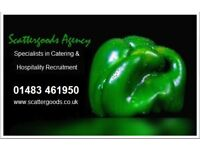 Catering Assistants - Surrey - School hours - £8.25ph