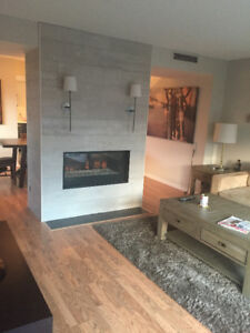 Spacious Fully Renovated Downtown Condo