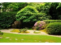 Acer garden design and landscaping. Competitively priced!