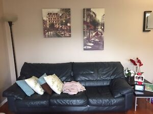 Set leather couches