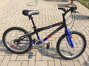 Kids mountain bike-brand new!