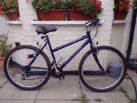 raleigh frontier 15 speed bike