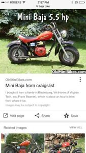 Looking for a Baja mini bike