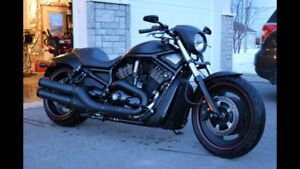 Night rod 2008