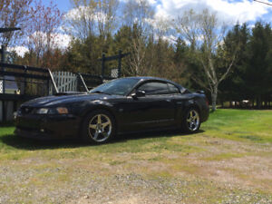 Ford Mustang GT supercharged (bas millage)