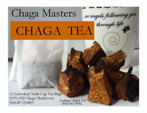 Chaga Tea - Tea Bags - Cinnamon or Regular Flavor