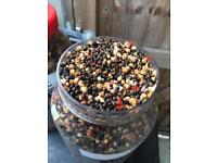 Carp HOMEMADE Chill party mix and liquid attractors