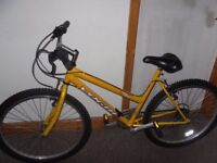 Ladies Vogue Mountain Bike Very Good Condition
