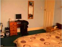 Spacious double room £380 per month, including council tax & a weekly cleaner. Professionals 25+only