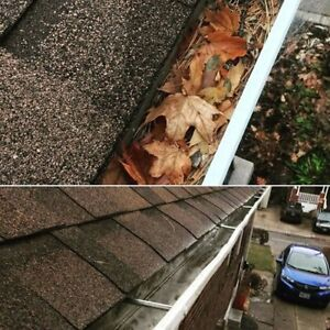 Professional Window and Gutter Cleaning Services