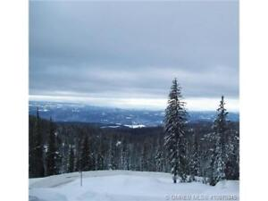 9818 Cathedral Dr, Vernon BC - Lot at Silver Star Mountain!