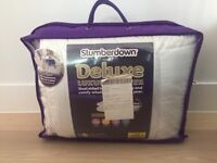 Luxury all-seasons double mattress topper protector
