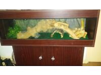 VIVARIUM IS NOW FOR SALE AGAIN!!!