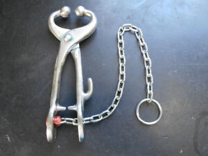 Cow Bull nose holder tongs pliers holder with lead chain.