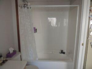 2 bedroom basement suite for rent on west side