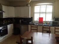 Double room to let in Quiet Mews House In Hove £485