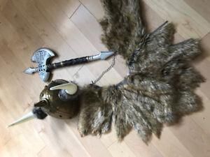 Halloween Viking costume