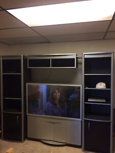 Sony floor model flat screen and wall unit