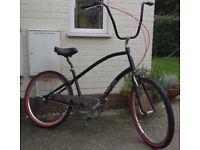 electra townie cruiser rat bike