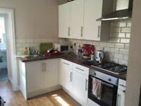 Amazing Room in Bedminister - Short term only