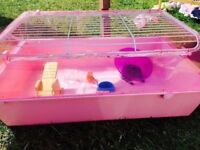 Large pink hamster cage