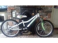 "Girls Mountain bike. Moonstone. 6 gears. 20"" age 7 to 9. Excellent condition"