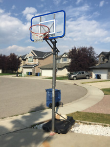lifetime basketball stand for sale