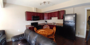 Fully furnished 1 bedroom walkout  basement suite from Aug1st