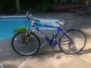 Mountain bike, 16 speed indexed