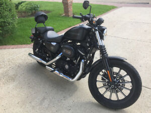 Sportster Iron Matte Black $7000 FIRM
