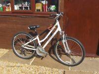 Ladies GIANT Sedonna hybrid bicycle.