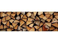 Firewood logs hardwood