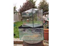 2 x fish tanks 2ft damaged/cracked,spares