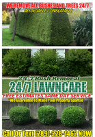 24/7 LawnCare SAME DAY SERVICE FREE ESTIMATES 24/7 CALL US NOW