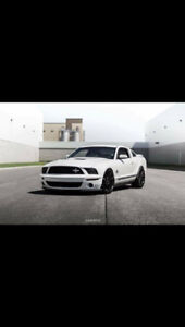 2008 Ford Mustang Shelby Gt500 Coupé (2 portes)