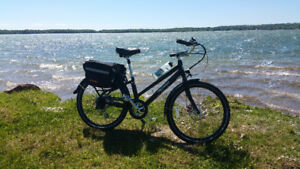 Pedego Classic Commuter - 1 Year Old - Like Brand New 37 kms