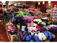Part Time & Full Time Florists required at busy East Belfast flower shop