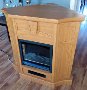 Electric Fireplace - Works Perfect - Awesome Heater  $95