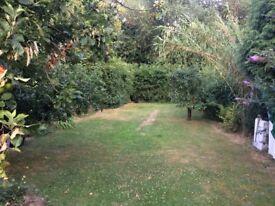 2 bedroom large garden maisonette for rent near Wembley Park/Neasden