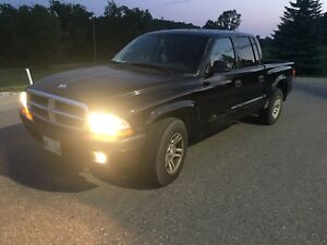 2004 DAKOTA V8 *safetied*