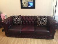 Vintage chic chesterfield burgundy oxblood sofa for sale