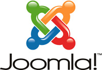 Experienced Professional offering Joomla website with hosting !