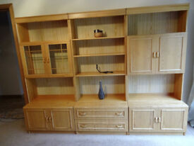 Pine wall unit/display case