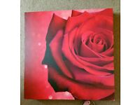 Large Red Rose Canvas from Next