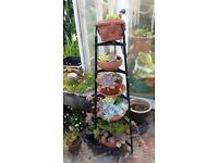 Five Tier Iron Stand With Plants