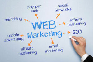 Professional Social Media and/or Website Management