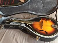 Mandolin and case (new)