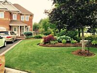 A&M LANDSCAPING - LAWN CARE SERVICES