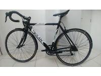 Dolan Prefissio 54cm road bike